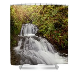 Shepperd's Dell Falls Shower Curtain by David Gn