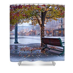 Sherman Snow Shower Curtain