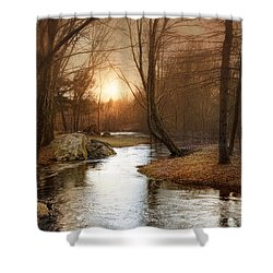 Shower Curtain featuring the photograph Silence Is Golden by Robin-Lee Vieira