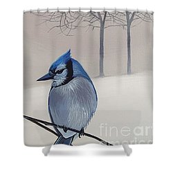 Silent Snow Shower Curtain