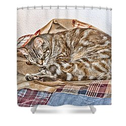 Shower Curtain featuring the digital art Sleeping by Photographic Art by Russel Ray Photos
