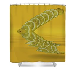 Shower Curtain featuring the photograph Slices Lemon Citrus Fruit by David French