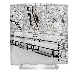 Snow In Central Park Nyc Shower Curtain