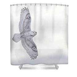Snowy Flyby Shower Curtain