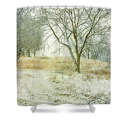 Shower Curtain featuring the digital art Snowy Winter Morning by Randy Steele