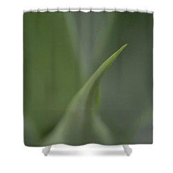 Softserve Swirl Shower Curtain by Tim Good