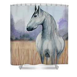 Solemn Spirit Shower Curtain