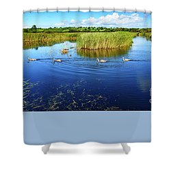 Shower Curtain featuring the photograph Somerset Levels by Colin Rayner