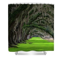Southern Oaks Shower Curtain