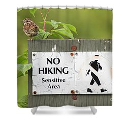 Sparrow Shower Curtain by Jeannette Hunt