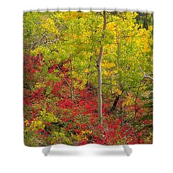 Splash Of Autumn Shower Curtain