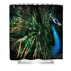 Splendour Shower Curtain by Andrew Paranavitana
