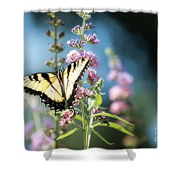 Spread Your Wings Shower Curtain by Judy Wolinsky