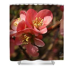 Spring Blooms Shower Curtain by Rebecca Overton