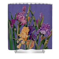 Spring Recital Shower Curtain