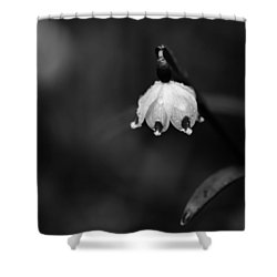 Spring Snowflake Shower Curtain