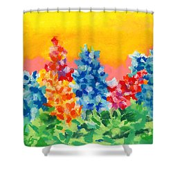 Spring Wildflowers Shower Curtain by Stephen Anderson