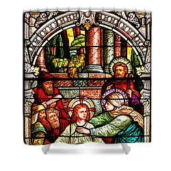 Shower Curtain featuring the photograph Stained Glass Scene 3 Crop by Adam Jewell