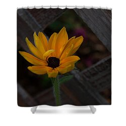 Shower Curtain featuring the photograph Standing Alone by Cherie Duran