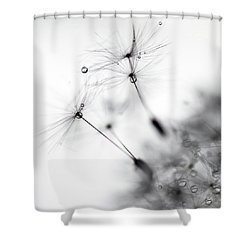 Standing Tall Shower Curtain by Rebecca Cozart