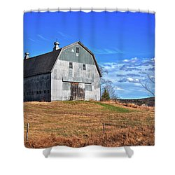 Stands With Dignity Shower Curtain by Richard Bean