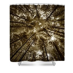 Star Light Shower Curtain by Denis Lemay