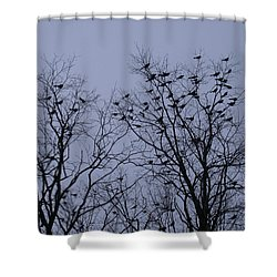 Starlings Shower Curtain