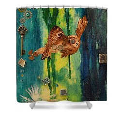 Steampunk Owl Blue Horizon Shower Curtain