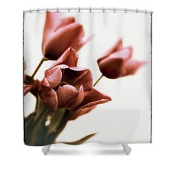 Shower Curtain featuring the photograph Still Life Tulips by Jessica Jenney