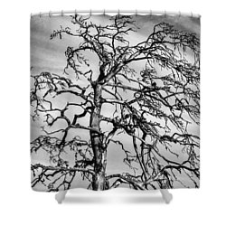 Still Standing - Black Edition Shower Curtain