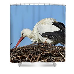 Shower Curtain featuring the photograph Stork On A Nest by Nick Biemans