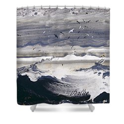 Shower Curtain featuring the painting Stormy Sea by Peder Balke