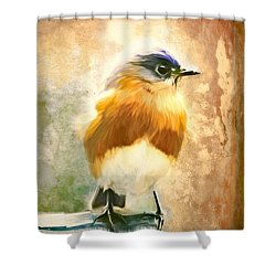 Strapping Bluebird Shower Curtain by Tina LeCour