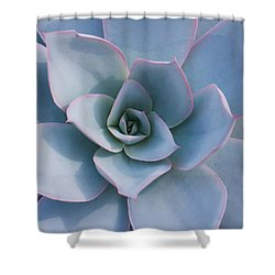Succulent Beauty Shower Curtain