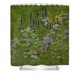 Summer Bouquet  Shower Curtain by Tim Good