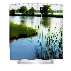 Summer Dreams Shower Curtain by Betty LaRue