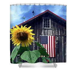 Sunflower By Barn Shower Curtain by Sally Weigand