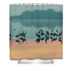 Sunrise Over The Hula Valley Shower Curtain by Dubi Roman