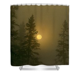 Shower Curtain featuring the photograph Sunrise Through The Fog 2 by Janice Adomeit