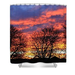 Shower Curtain featuring the photograph Sunset And Filigree by Nareeta Martin