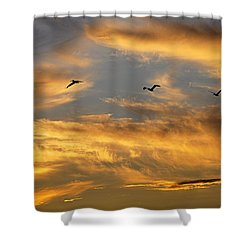 Shower Curtain featuring the photograph Sunset Flight by AJ Schibig