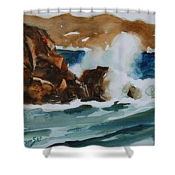 Shower Curtain featuring the painting Surf Study by Len Stomski