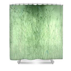 Surface Shower Curtain by Mark Ross