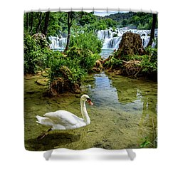 Swan In The Waterfalls Of Skradinski Buk At Krka National Park In Croatia Shower Curtain