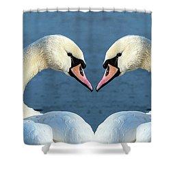 Swans Portrait Shower Curtain