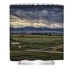 Sweet Summer Rain Shower Curtain by Mitch Shindelbower