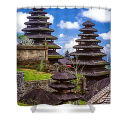 Shower Curtain featuring the photograph Temple City by T Brian Jones