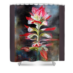 Texas Indian Paintbrush Shower Curtain by Karen Kennedy Chatham