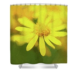 Texas Wildflower 2 Shower Curtain
