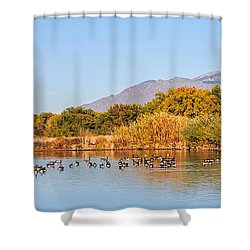 Shower Curtain featuring the photograph The Bosque by Gina Savage